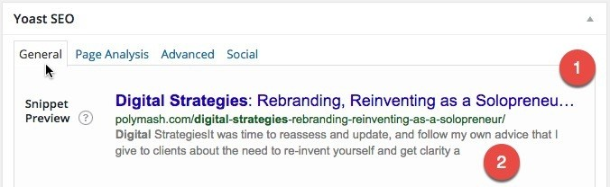 Search Result Snippet - A Bad Example